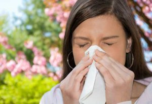 Key Questions about Allergies
