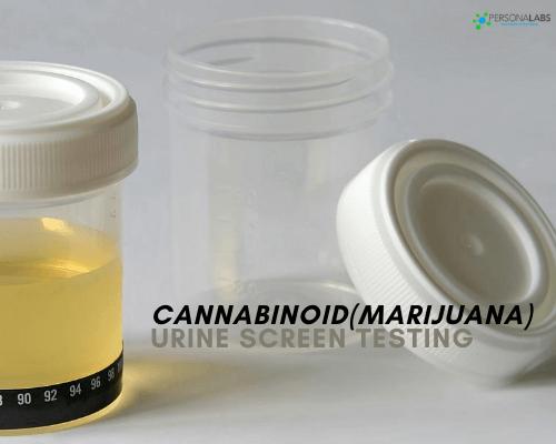 Cannabinoid (Marijuana) Urine Screen
