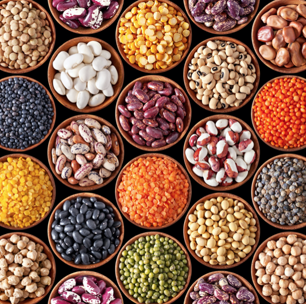 picture of different legumes